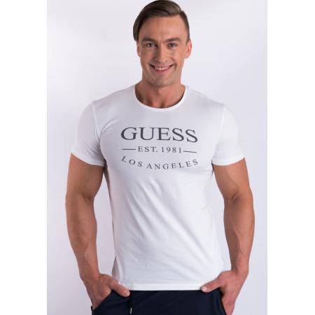 43c1845c0d Pánské tričko Guess U77M12